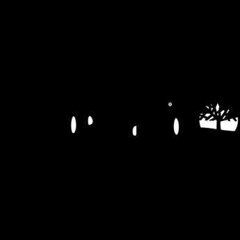 Image du fabricant Timberland